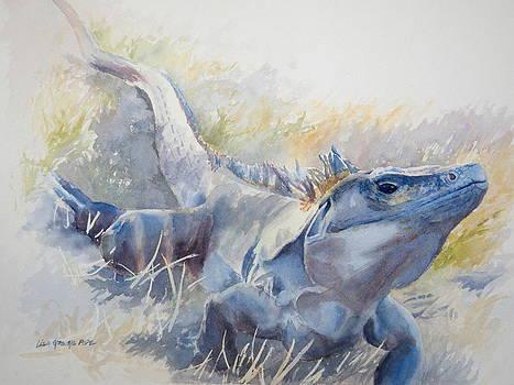 Ctenosaur by Lisa Pope