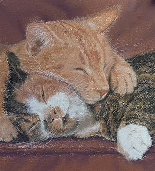 Cuddles by Barbara Bird