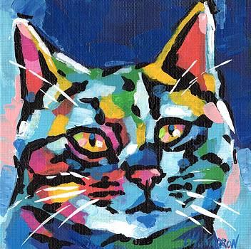 Curious Cat by Christine Karron
