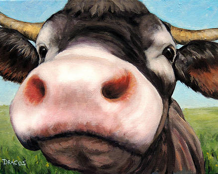 Curious Cow with Pink Nose by Dottie Dracos