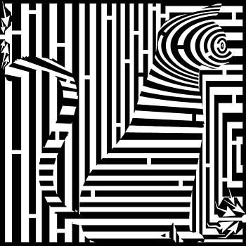 Yonatan Frimer Maze Artist - Curious Kitten Maze