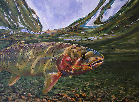 Cutthroat Hooked in the Ripple by Les Herman