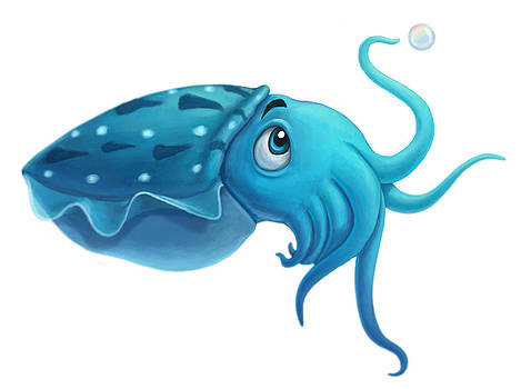 Cuttlefish by Michael Trujillo