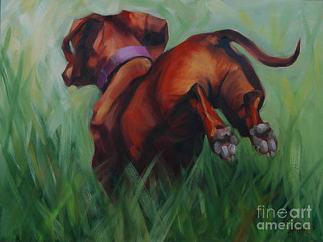 Dachshund by Pet Whimsy  Portraits