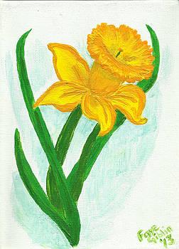 Daffodil Dance by Faye Giblin