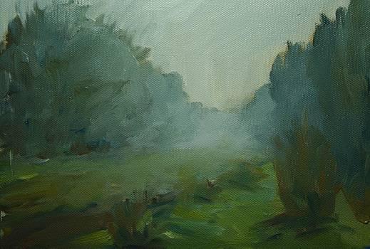 Dahlia Farm November Fog by James Reynolds