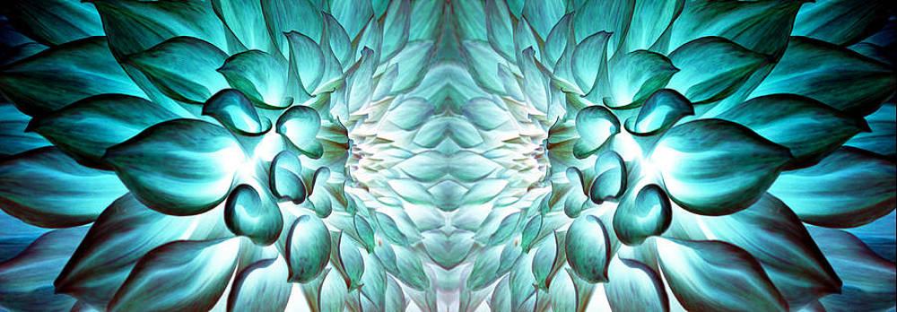 Sumit Mehndiratta - Dahlia flower art