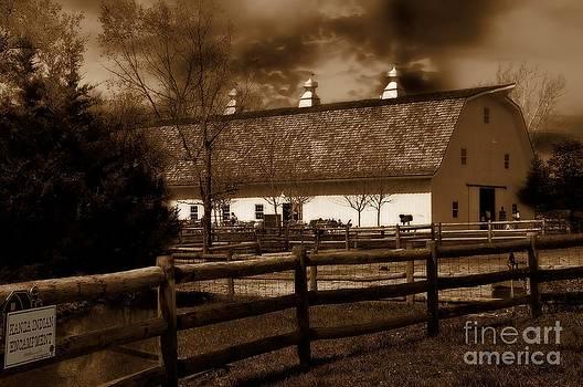 Liane Wright - Dairy Barn