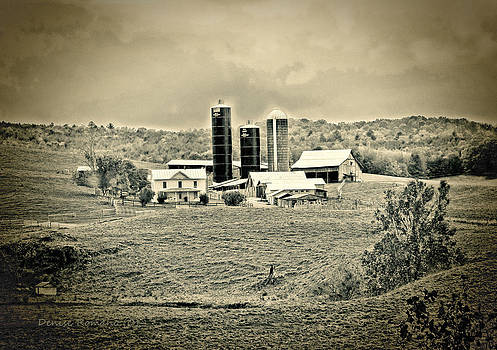 Dairy Farm by Denise Romano