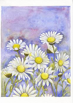 Daisies by Donlapak Chaithavorn