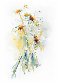 Daisy Bouquet by Stephie Butler