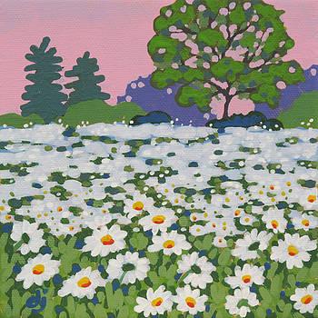Daisy Morning by Dorothy Jenson