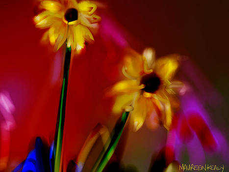 Dancing Black-Eyed Susans by Maureen Kealy