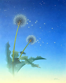 Dandelion by Ken Shotwell