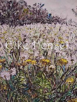 Dandelion Meadow by Elke Hensel