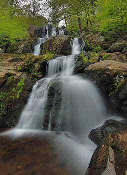 Dark Hollow Falls - Shenandoah by Stephen  Vecchiotti