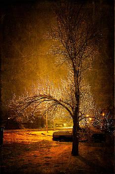 Dark Icy Night by Sofia Walker