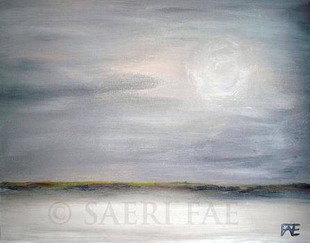 Dark Skies by Saeri Fae