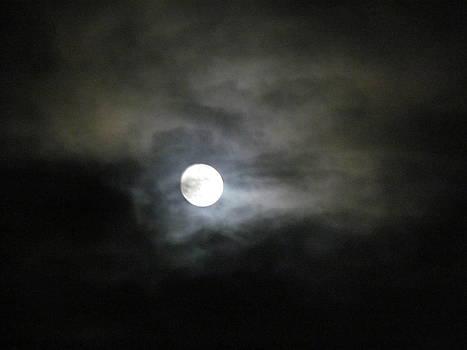 Dark Sky and Moon by Pamela Morrow