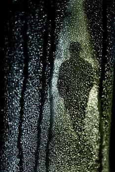Dark Stranger by Richard Piper