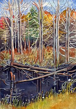 Dark Water by Katherine Miller