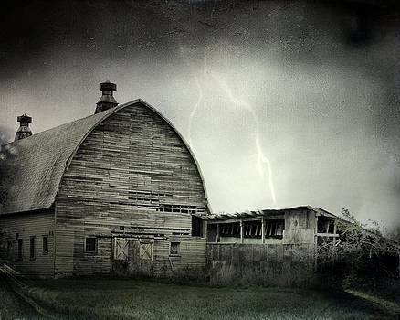 Gothicolors Donna Snyder - Darkened Sky