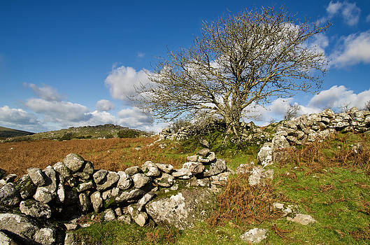 Dartmoor scene by Pete Hemington