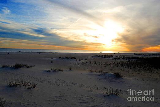 Dauphin Sunset by Linda Mesibov