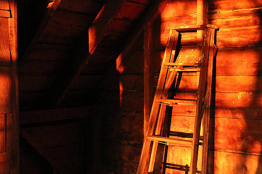 Dave's barn at sunset by Paul Thomas