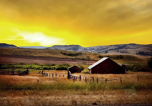 Randall Branham - Dawn at the Ranch