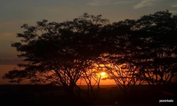 Dawn by Paulo Zerbato