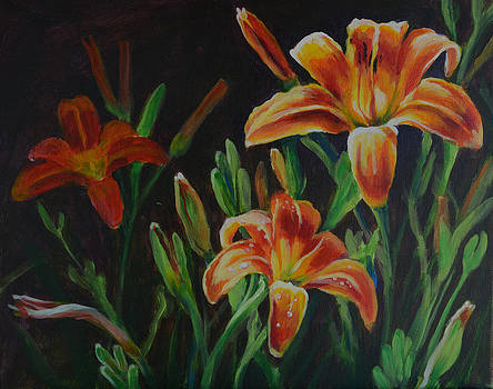 Daylilies by Renee Peterson