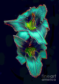 Daylily Photo Blooms Into Digital Art by ImagesAsArt Photos And Graphics