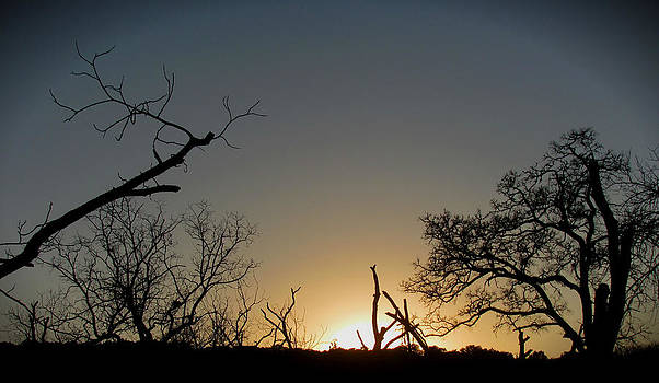 Days End by Lisa Waggoner