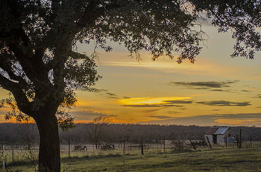 Day's End on the Farm by Debbie Karnes