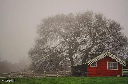 Days Of Fall by Sarai Rachel
