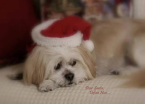 Dear Santa by Jennifer Lawrence