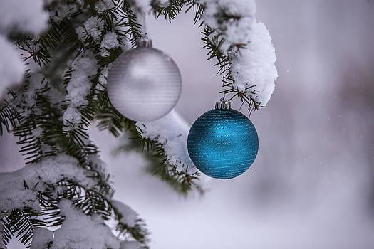 December Snow by CJ Schmit