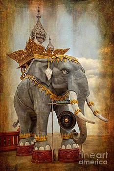 Adrian Evans - Decorative Elephant