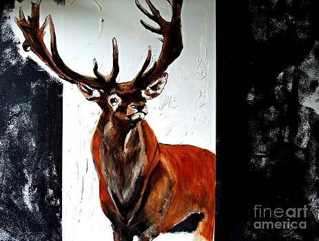 Deer by Cass Oest