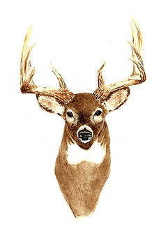 Deer - Front View by Michael Vigliotti
