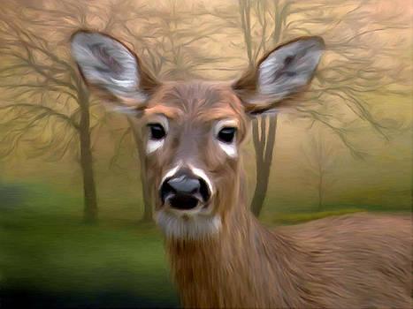 Nina Bradica - Deer in the Woods