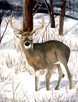 Deer in the Woods by Zelma Hensel