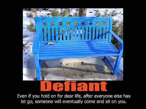 Defiant by Jon Lacelle