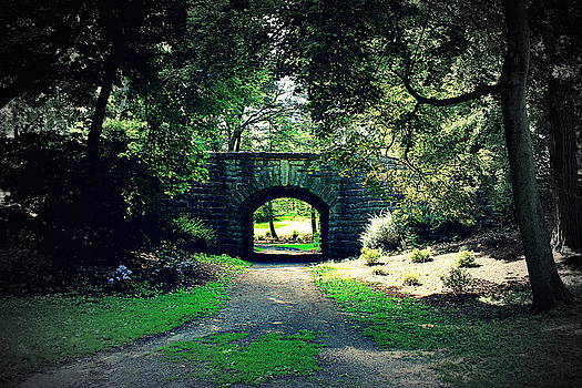 Delaware Park by John Carncross
