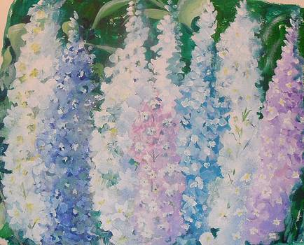 Delphiniums by Wendy Head