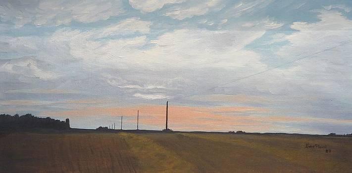 Del's wheat crop by Linda Koch