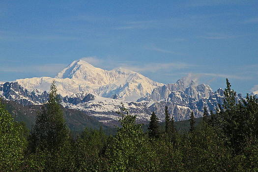 Denali Morning by Donna Quante
