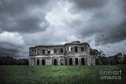 Svetlana Sewell - Derelict Mansion