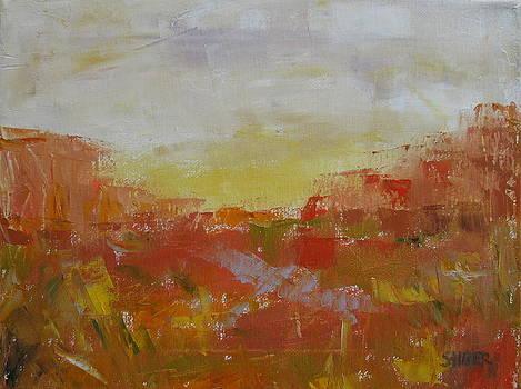 Desert Aura by Kathy Stiber